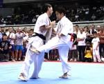 ▲緑武士(右)がカザフスタンのアディレット(左)を破り、初優勝