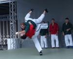 ロシアの各武道のダイナミックな演武が披露された。