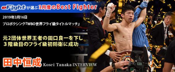 ボクシング 階級 プロ
