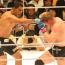 【UFC】アントニオ・ホドリゴ・ノゲイラ引退