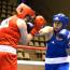 【ボクシング】空道王者・大谷がボクシングでも日本一に