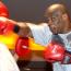 【ボクシング】タイソン現役ばりパンチ連打が話題、UFC戦士も驚愕した動き